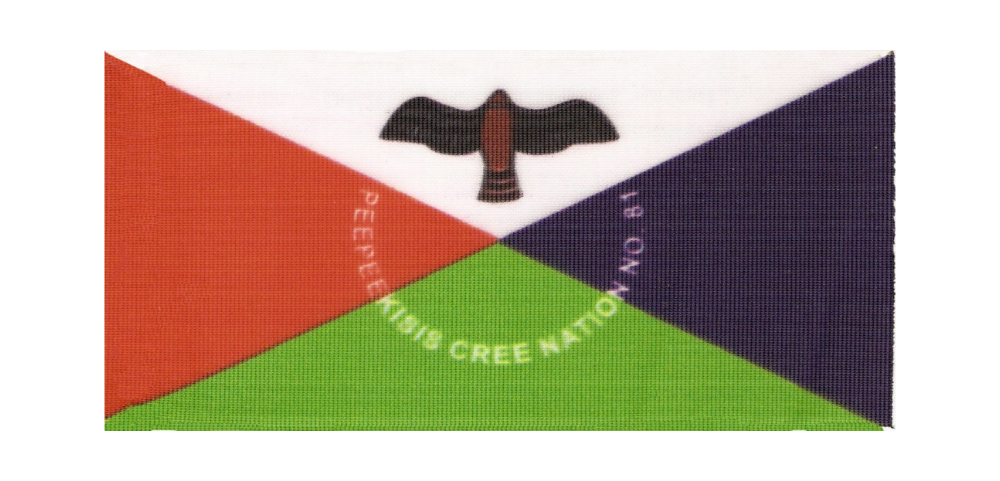 PPK-Flag-transparent.png